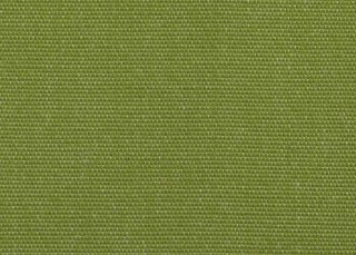 Kiwi Green pattern image